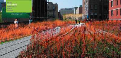 The High Line (Diller Scofidio + Renfro)